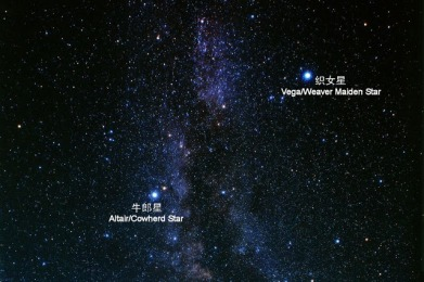 Image result for altair and vega